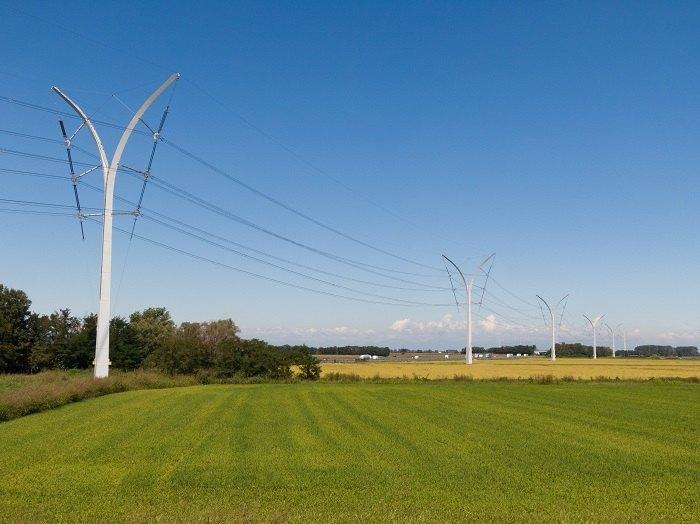 Terna sostenibilità